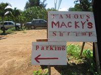 Macky's Shrimp Truck